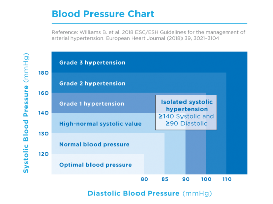Blood Pressure Diary and Blood Pressure Pass (free download) for tracking  your measurements